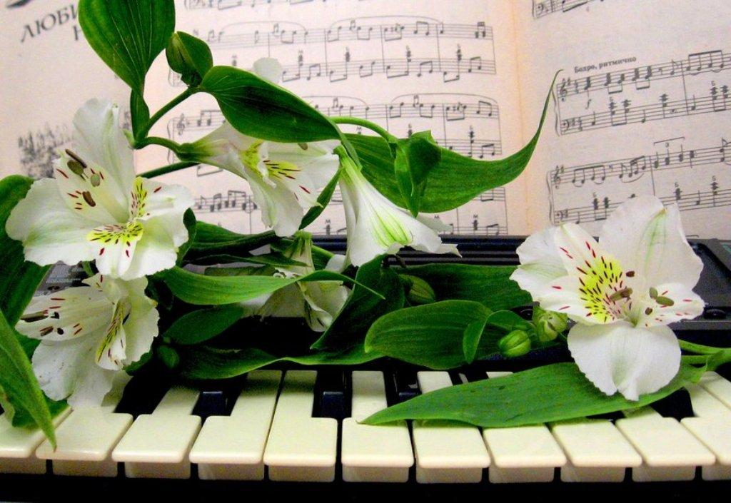 Падения, весеннее музыкальное поздравление